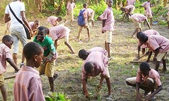 Niños plantando Moringa en el Orfanato, cerca de Abidjan